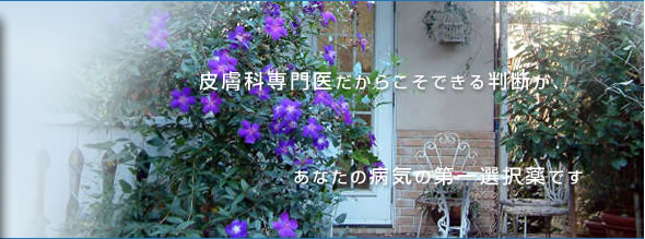 �����s��c�抗�c�̔畆�� ����c��t�Ȉ�@